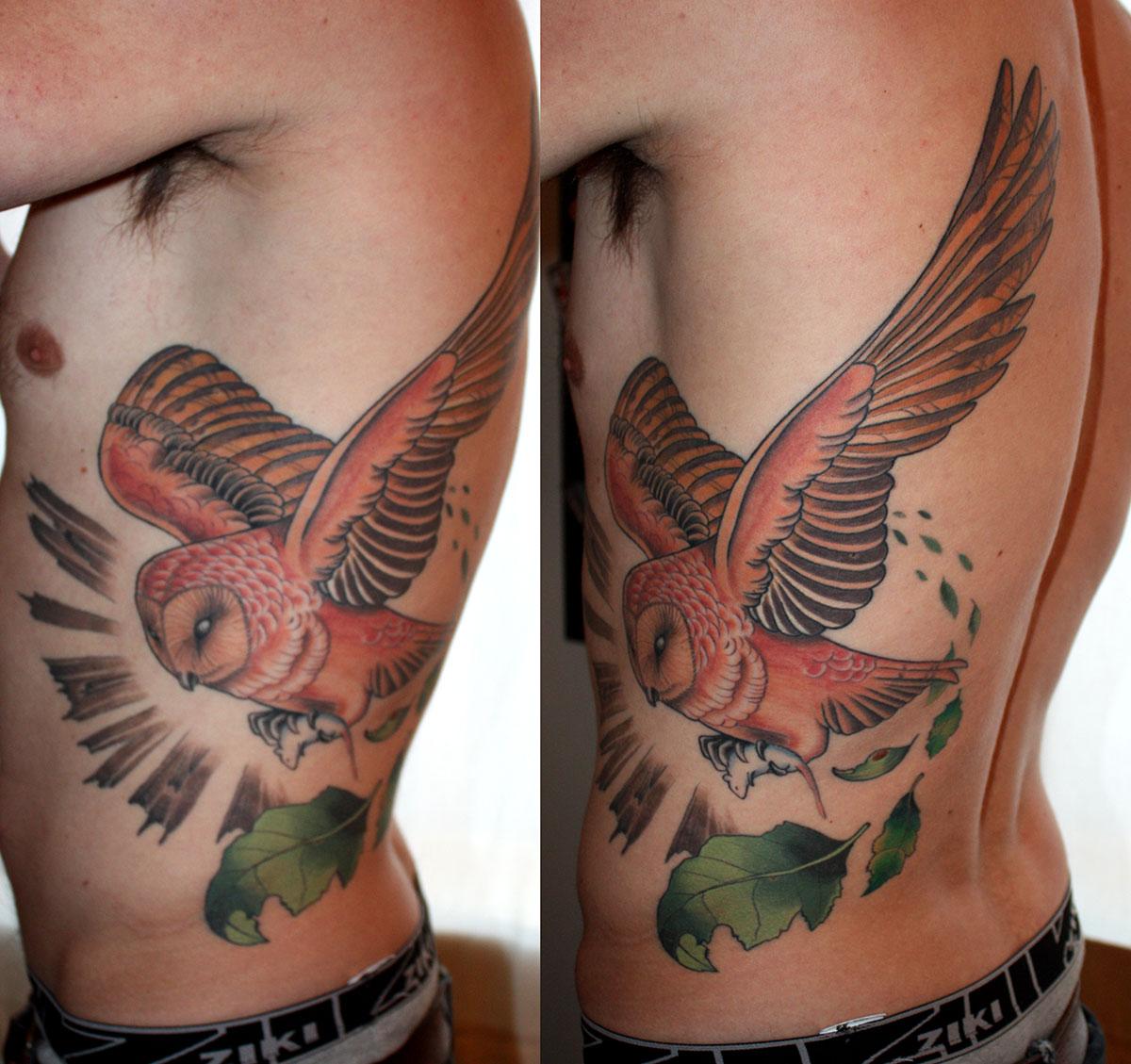owl (healed) « Pointbreak Tattoo